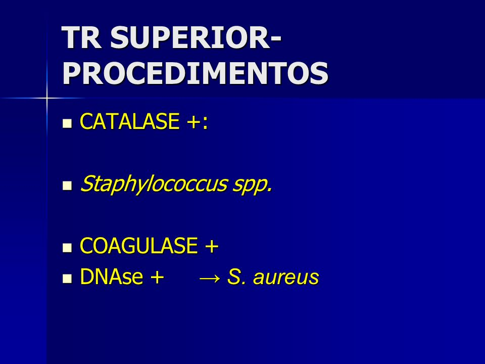 TR SUPERIOR-PROCEDIMENTOS