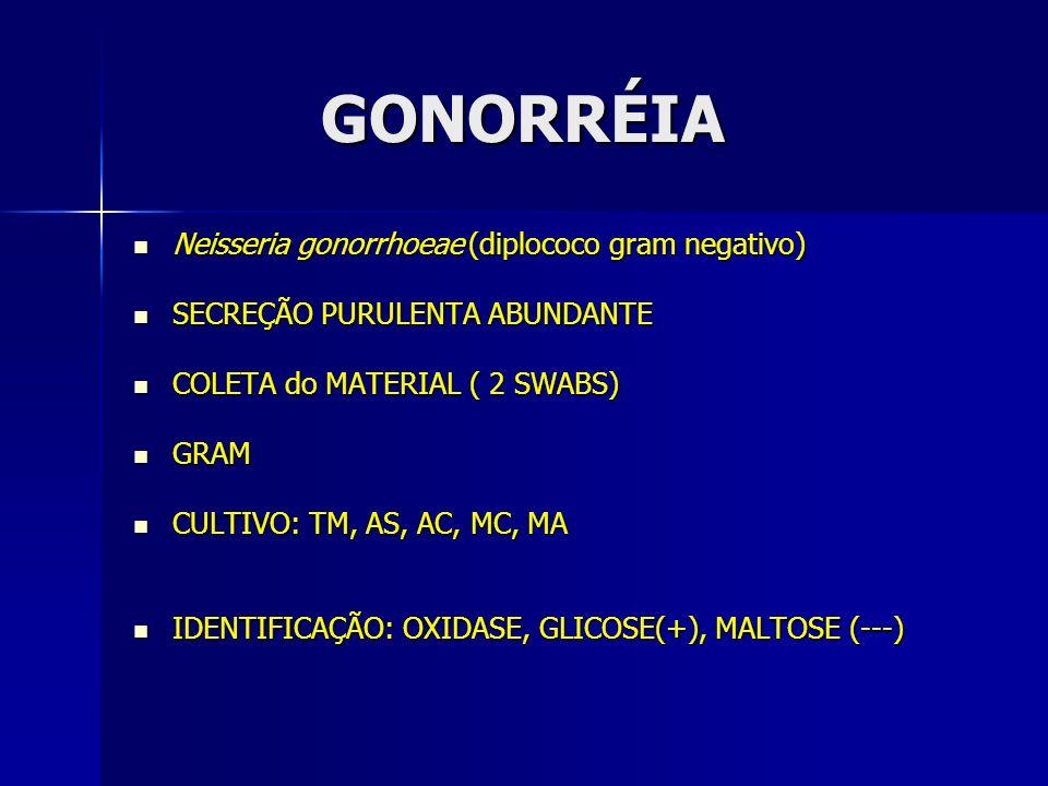 GONORRÉIA Neisseria gonorrhoeae (diplococo gram negativo)