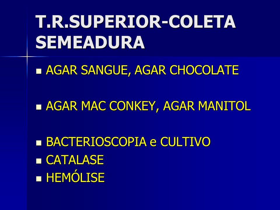 T.R.SUPERIOR-COLETA SEMEADURA