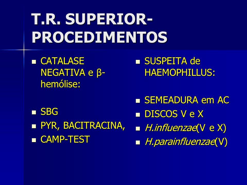 T.R. SUPERIOR-PROCEDIMENTOS
