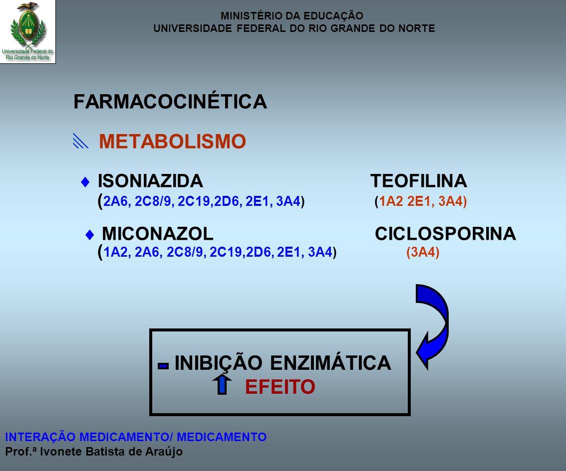 FARMACOCINÉTICA  METABOLISMO EFEITO  ISONIAZIDA TEOFILINA