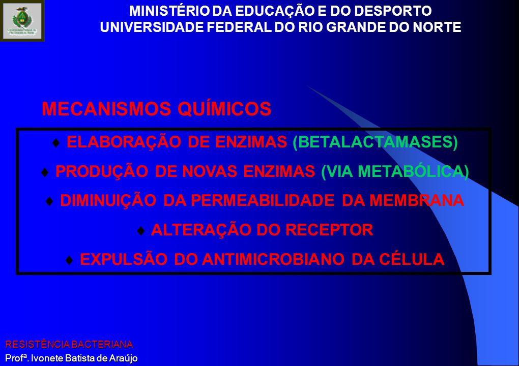 MECANISMOS QUÍMICOS  ELABORAÇÃO DE ENZIMAS (BETALACTAMASES)