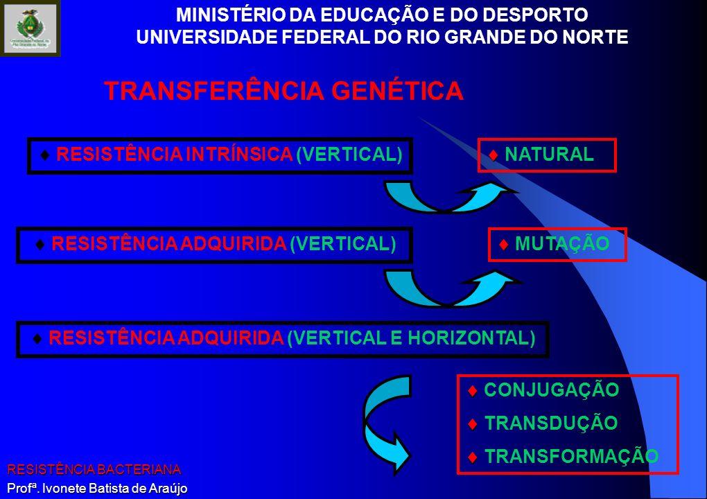 TRANSFERÊNCIA GENÉTICA
