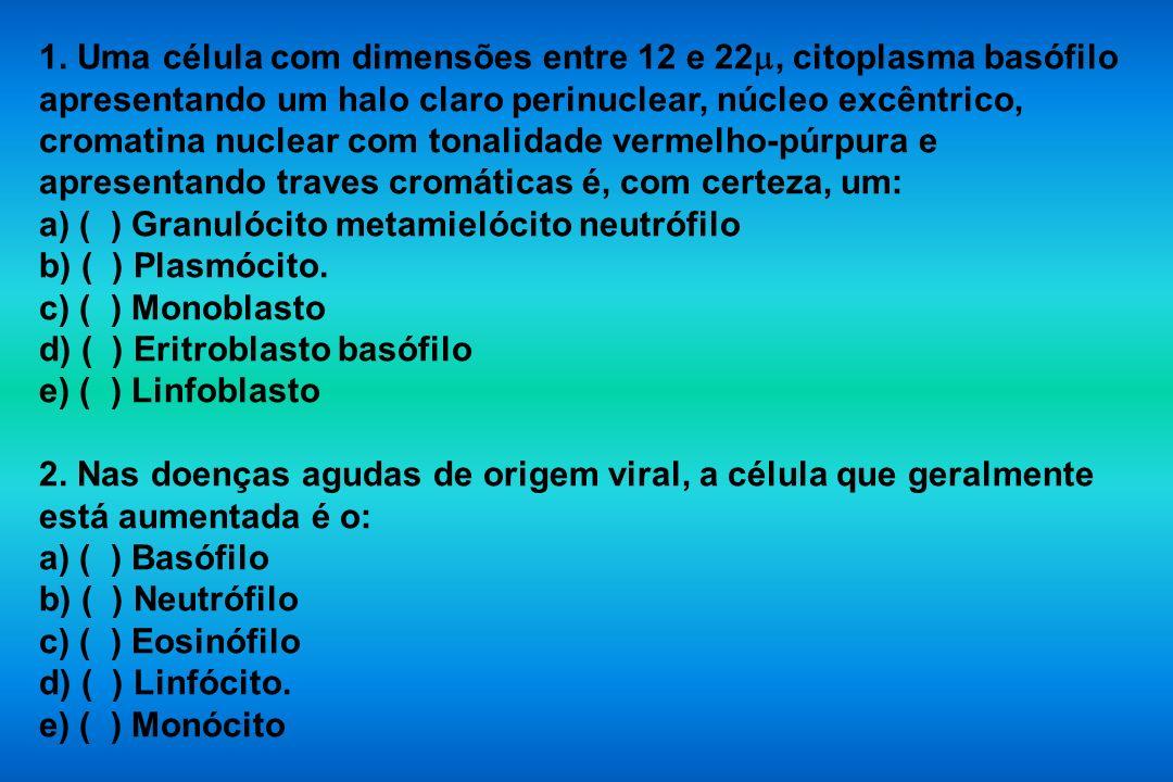 1. Uma célula com dimensões entre 12 e 22, citoplasma basófilo apresentando um halo claro perinuclear, núcleo excêntrico, cromatina nuclear com tonalidade vermelho-púrpura e apresentando traves cromáticas é, com certeza, um: