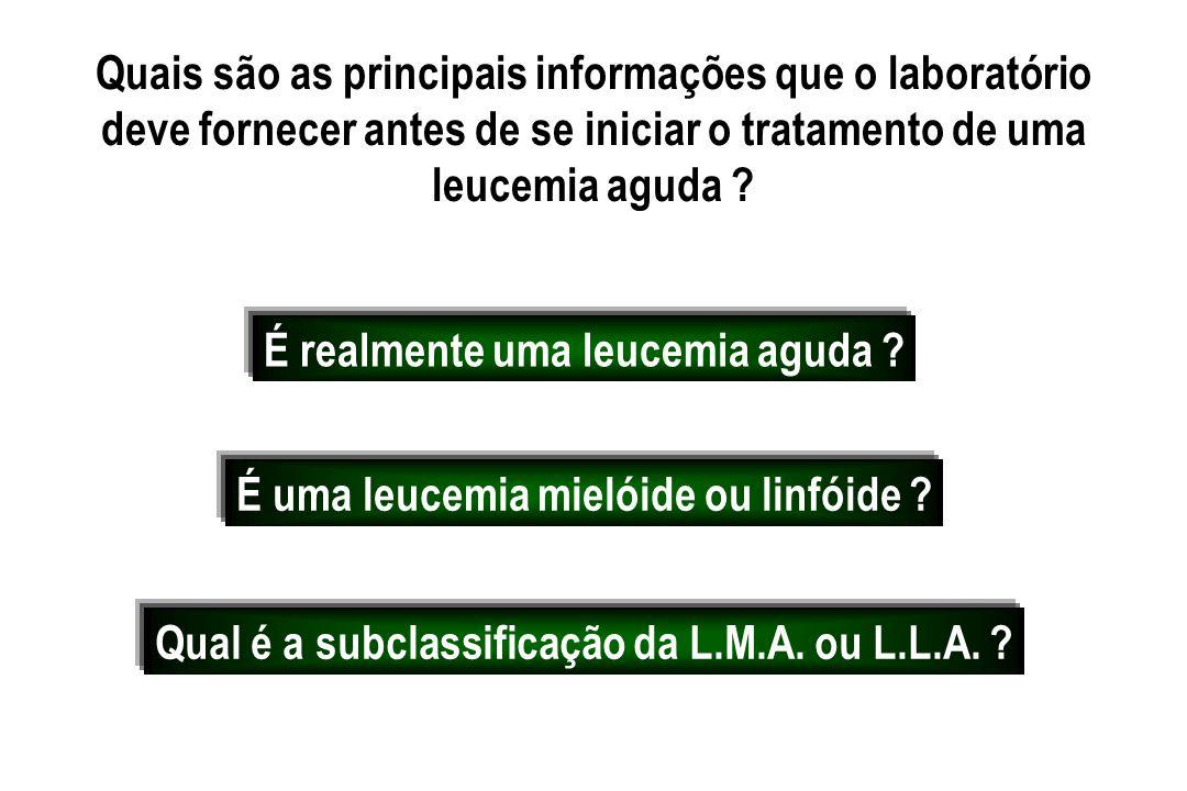 Quais são as principais informações que o laboratório deve fornecer antes de se iniciar o tratamento de uma leucemia aguda