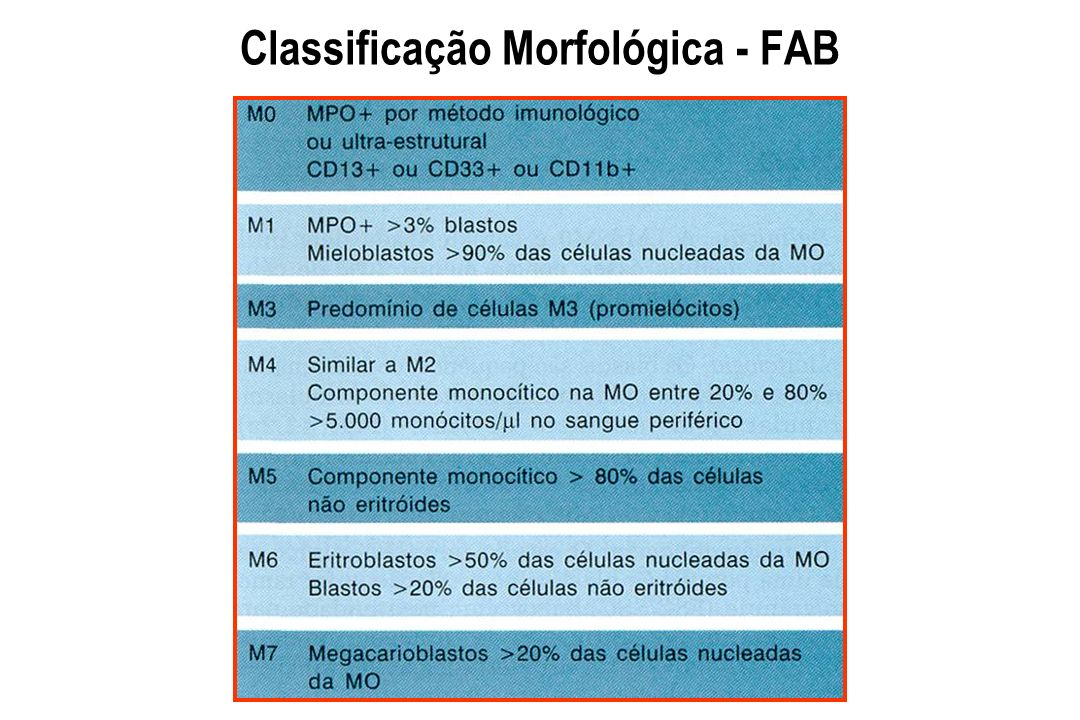 Classificação Morfológica - FAB