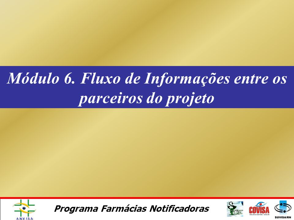 Módulo 6. Fluxo de Informações entre os parceiros do projeto