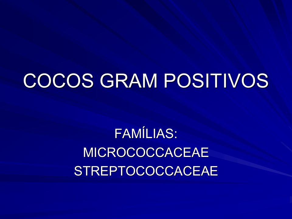 FAMÍLIAS: MICROCOCCACEAE STREPTOCOCCACEAE