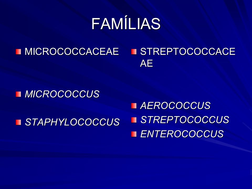 FAMÍLIAS MICROCOCCACEAE MICROCOCCUS STAPHYLOCOCCUS STREPTOCOCCACEAE