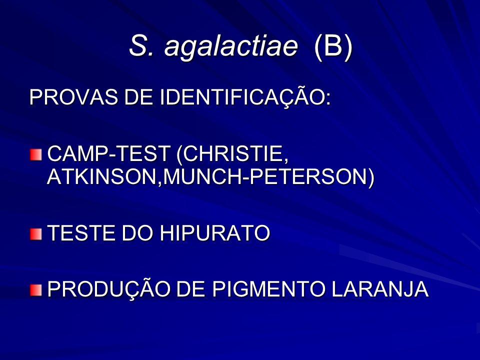 S. agalactiae (B) PROVAS DE IDENTIFICAÇÃO: