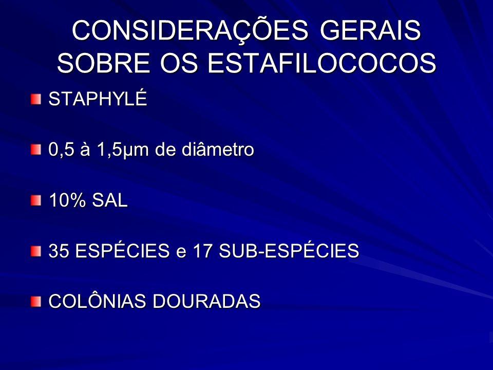 CONSIDERAÇÕES GERAIS SOBRE OS ESTAFILOCOCOS