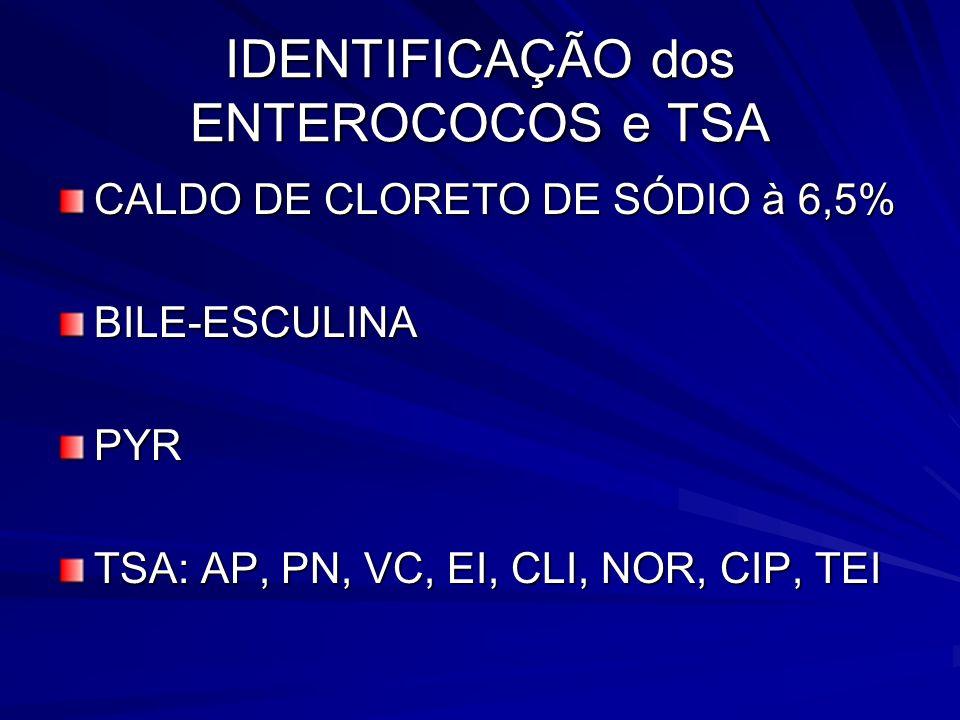 IDENTIFICAÇÃO dos ENTEROCOCOS e TSA