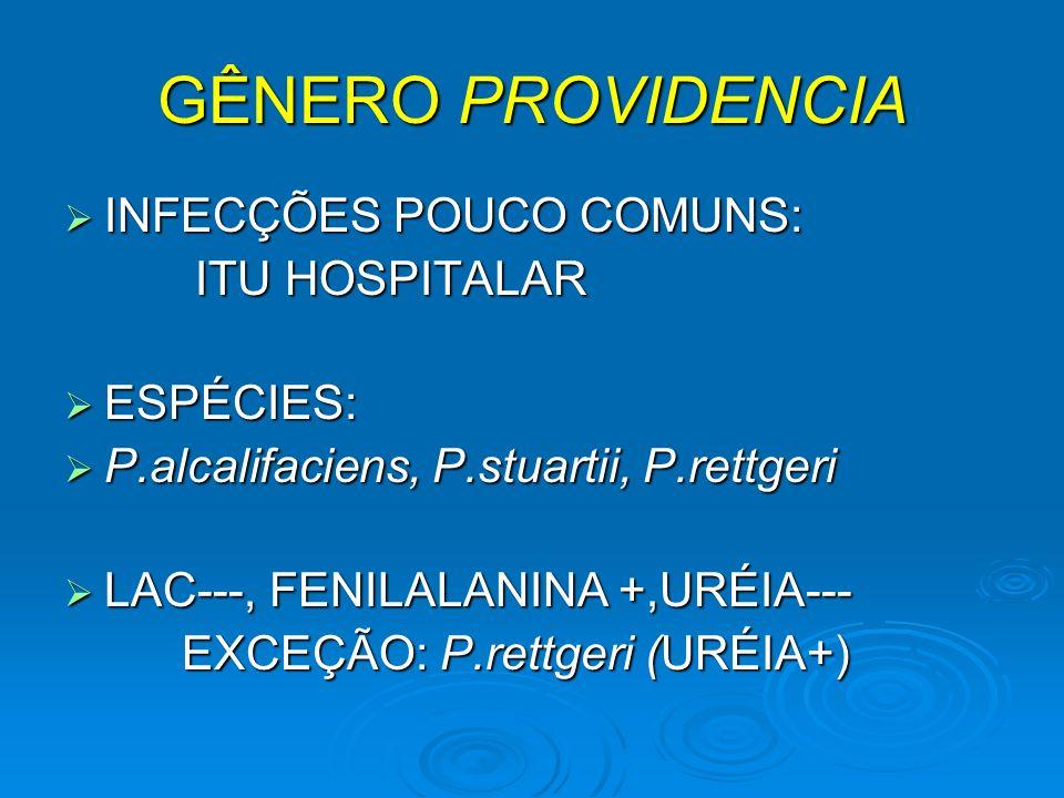 GÊNERO PROVIDENCIA INFECÇÕES POUCO COMUNS: ITU HOSPITALAR ESPÉCIES: