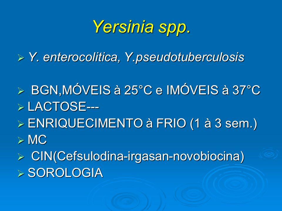 Yersinia spp. Y. enterocolitica, Y.pseudotuberculosis