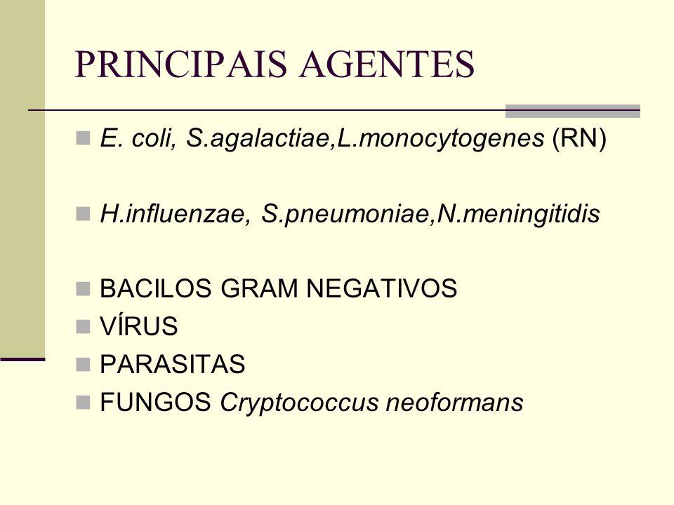 PRINCIPAIS AGENTES E. coli, S.agalactiae,L.monocytogenes (RN)