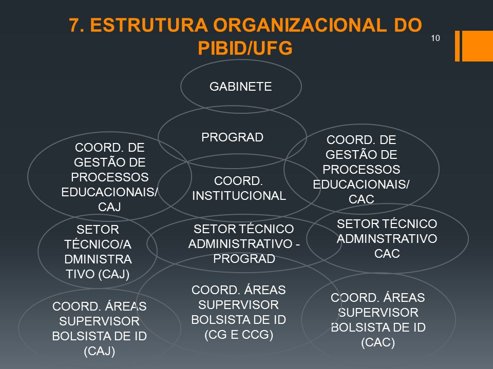 7. ESTRUTURA ORGANIZACIONAL DO PIBID/UFG