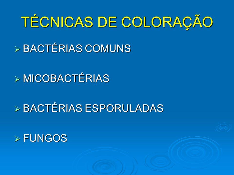 TÉCNICAS DE COLORAÇÃO BACTÉRIAS COMUNS MICOBACTÉRIAS