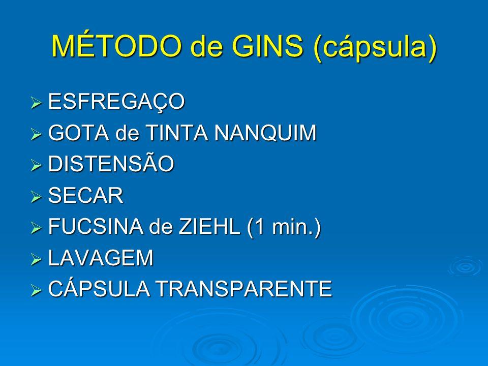 MÉTODO de GINS (cápsula)