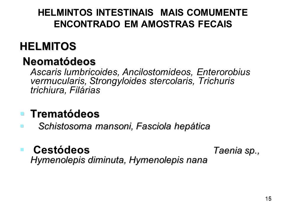 HELMINTOS INTESTINAIS MAIS COMUMENTE ENCONTRADO EM AMOSTRAS FECAIS