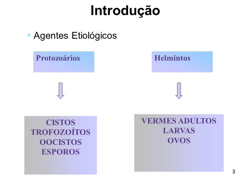 Introdução Agentes Etiológicos Protozoários Helmintos CISTOS