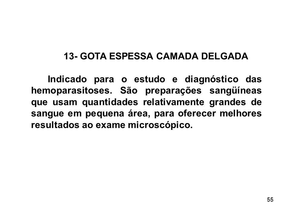 13- GOTA ESPESSA CAMADA DELGADA