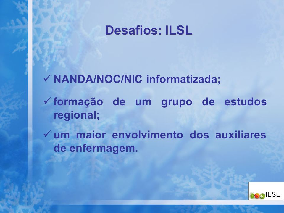 Desafios: ILSL NANDA/NOC/NIC informatizada;