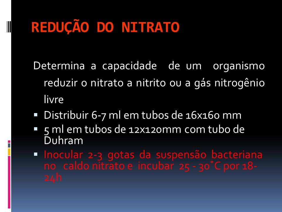 REDUÇÃO DO NITRATODetermina a capacidade de um organismo reduzir o nitrato a nitrito ou a gás nitrogênio livre.