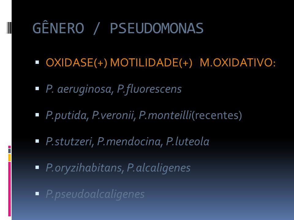 GÊNERO / PSEUDOMONAS OXIDASE(+) MOTILIDADE(+) M.OXIDATIVO: