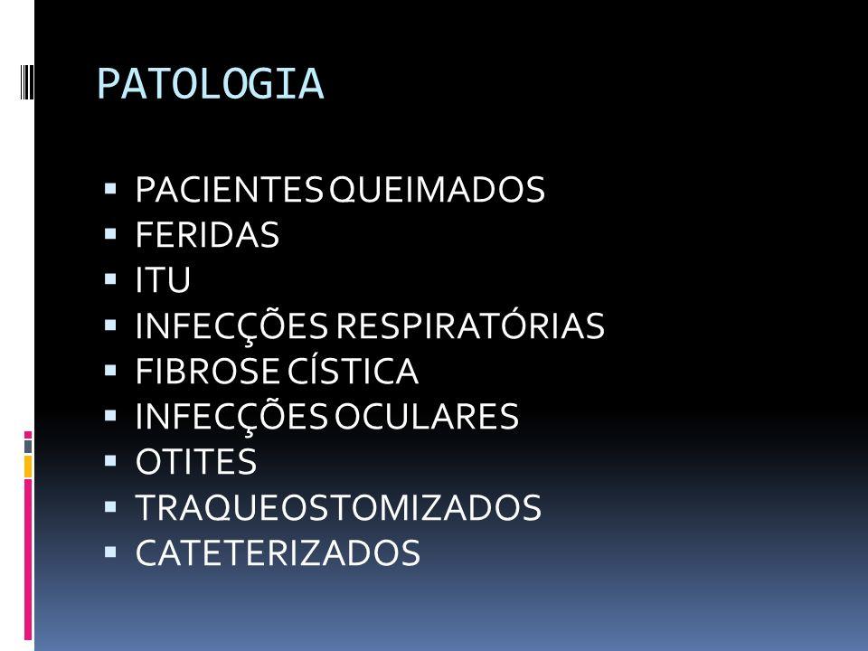 PATOLOGIA PACIENTES QUEIMADOS FERIDAS ITU INFECÇÕES RESPIRATÓRIAS
