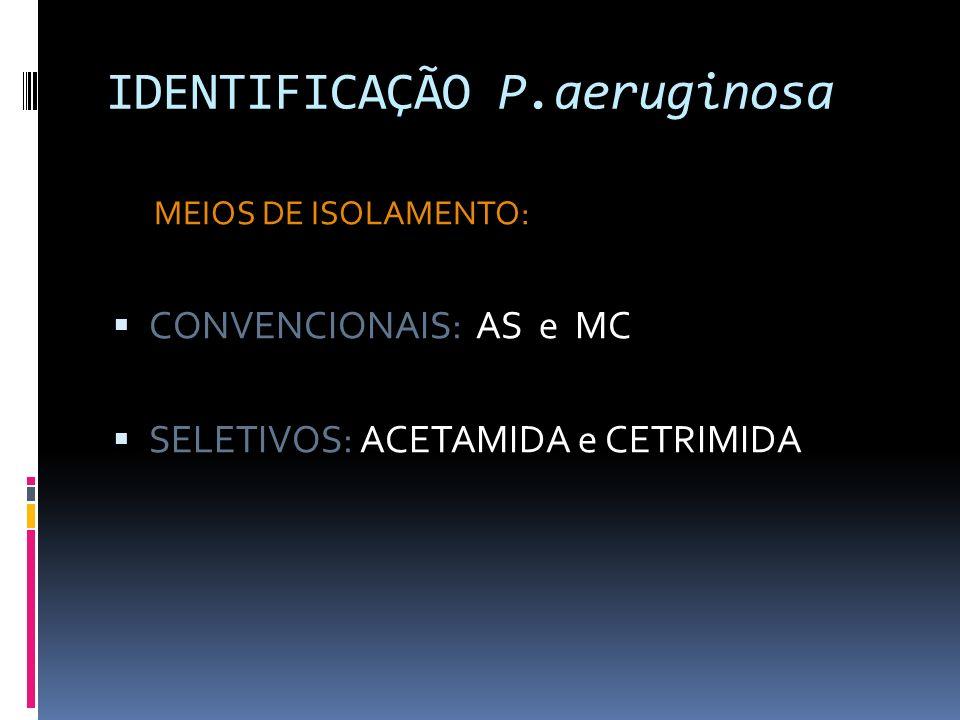 IDENTIFICAÇÃO P.aeruginosa