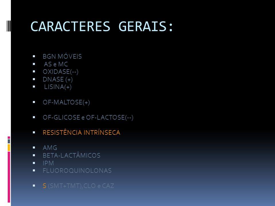 CARACTERES GERAIS: BGN MÓVEIS AS e MC OXIDASE(--) DNASE (+) LISINA(+)