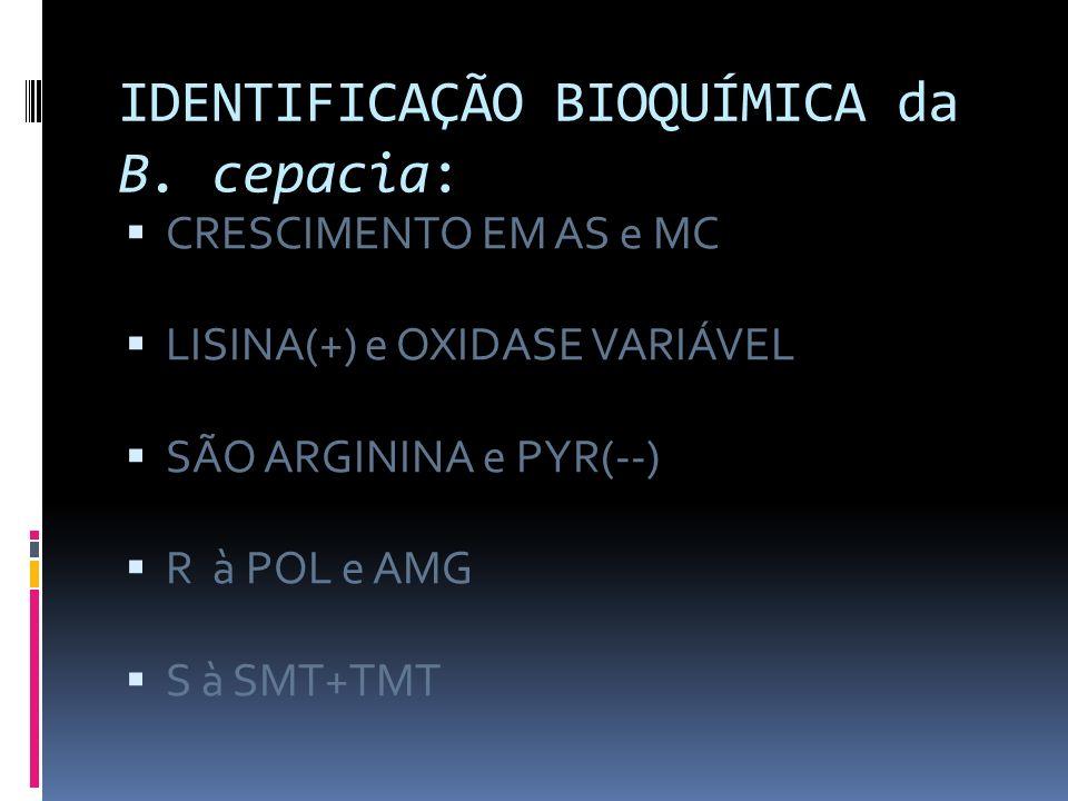 IDENTIFICAÇÃO BIOQUÍMICA da B. cepacia: