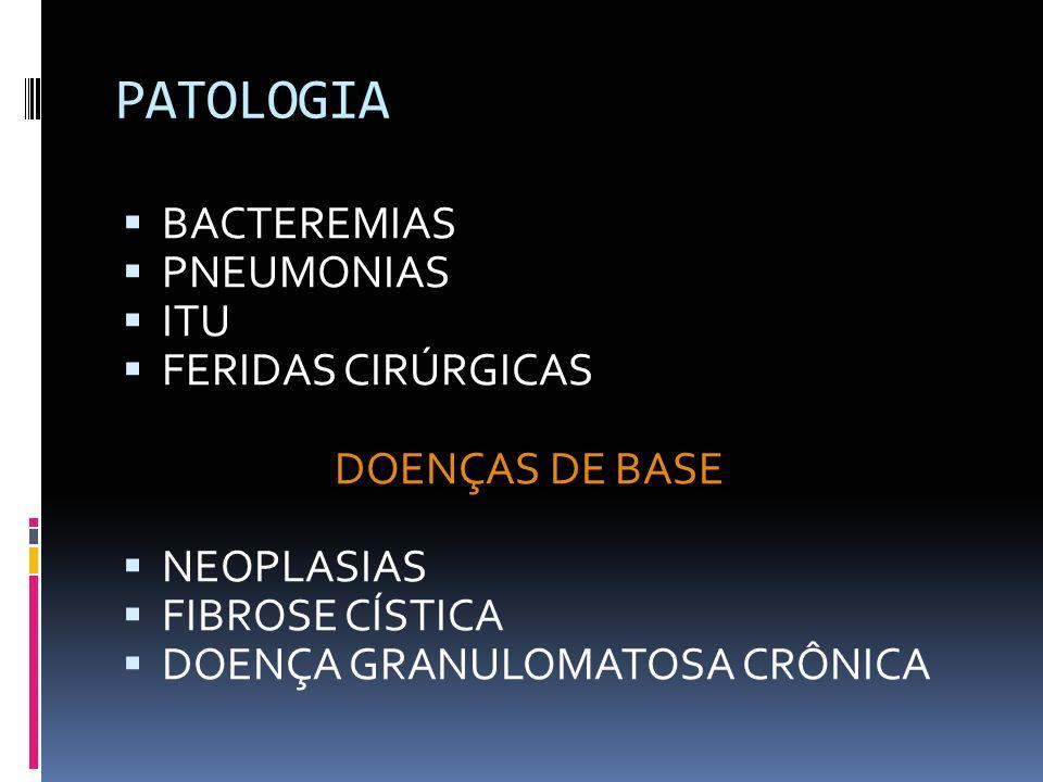 PATOLOGIA BACTEREMIAS PNEUMONIAS ITU FERIDAS CIRÚRGICAS