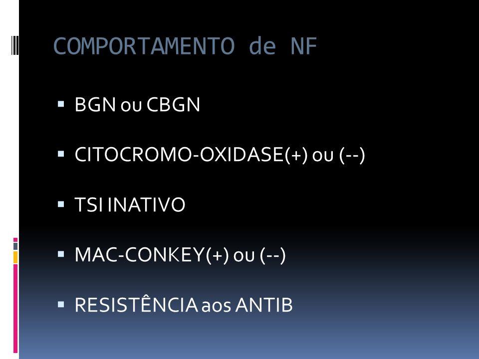 COMPORTAMENTO de NF BGN ou CBGN CITOCROMO-OXIDASE(+) ou (--)