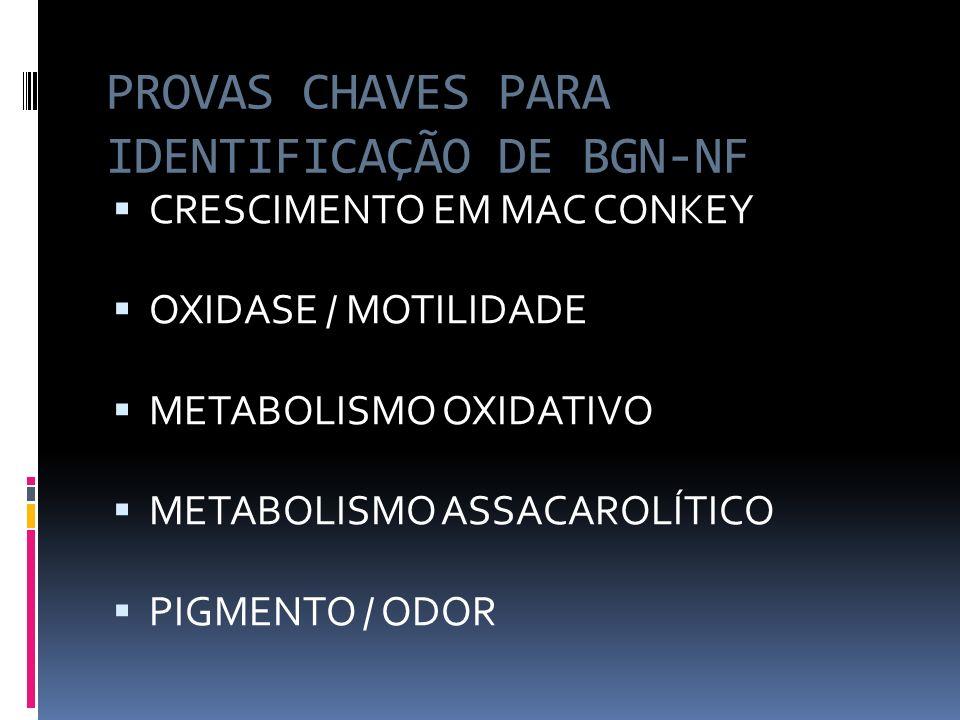 PROVAS CHAVES PARA IDENTIFICAÇÃO DE BGN-NF