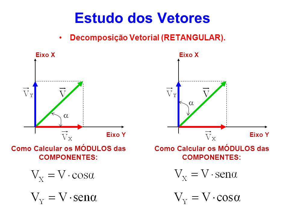 Estudo dos Vetores Decomposição Vetorial (RETANGULAR). a a