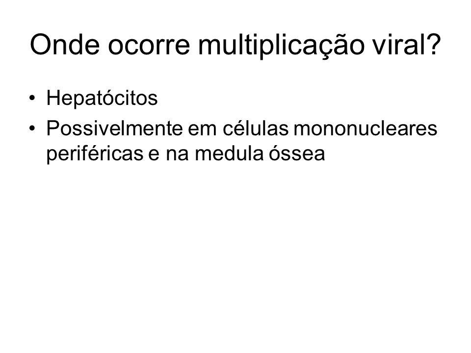 Onde ocorre multiplicação viral