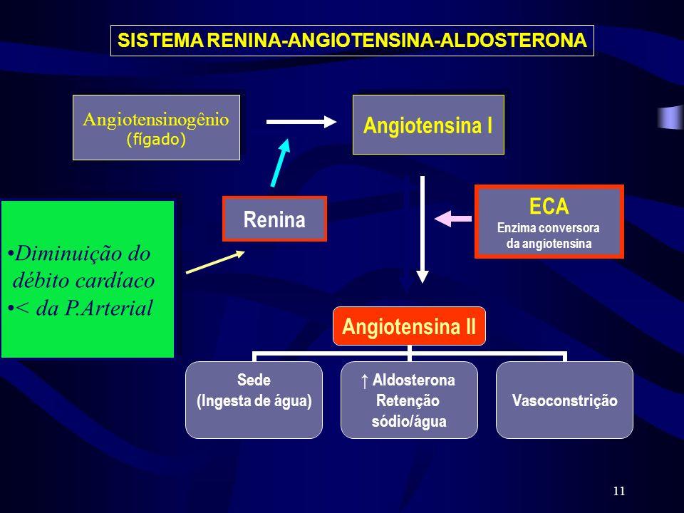 Angiotensina I ECA Renina