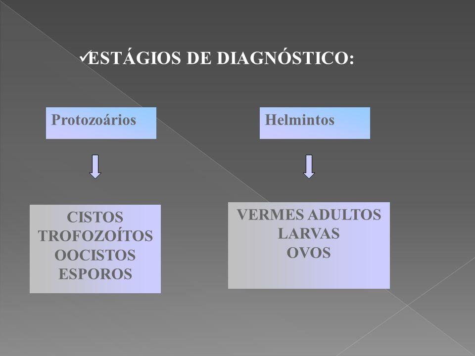 ESTÁGIOS DE DIAGNÓSTICO: