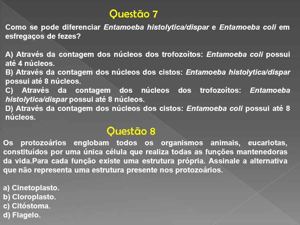 Questão 7 Como se pode diferenciar Entamoeba histolytica/dispar e Entamoeba coli em esfregaços de fezes