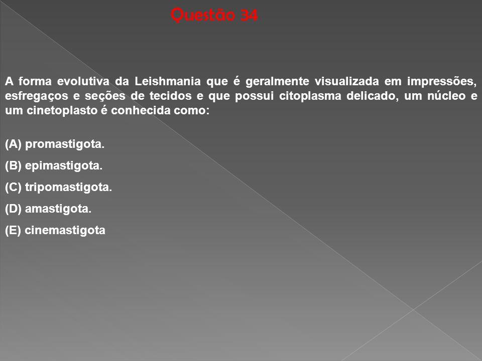 Questão 34