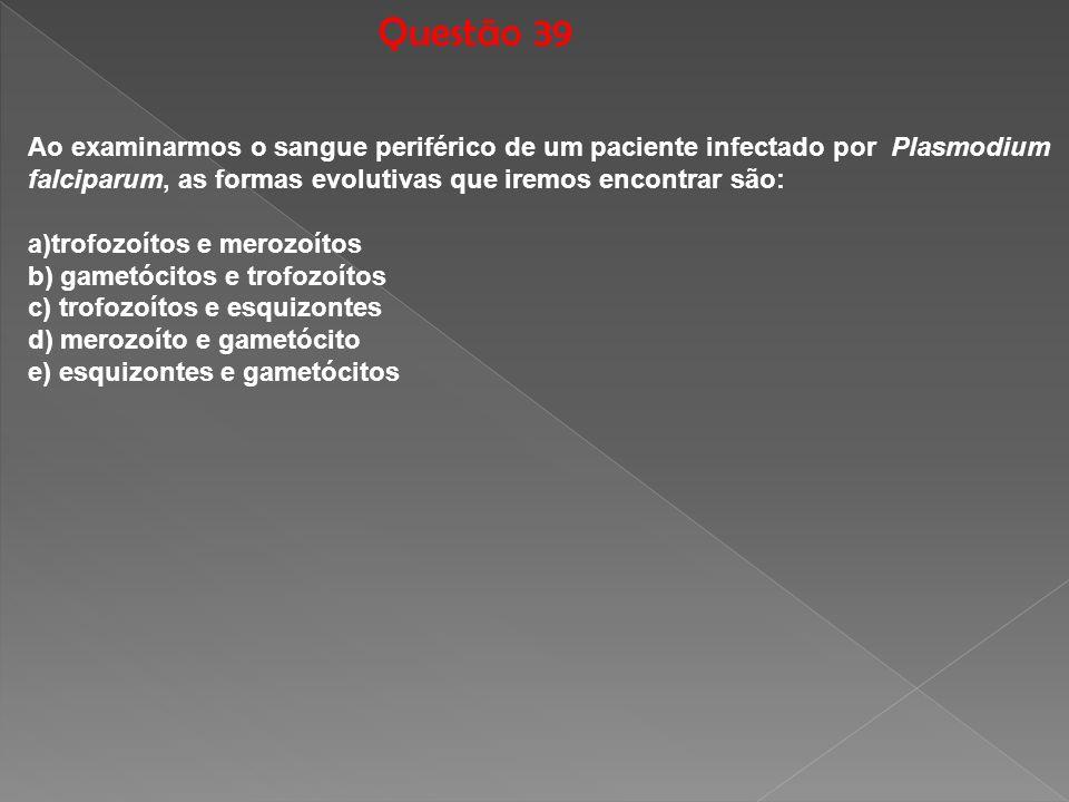 Questão 39 Ao examinarmos o sangue periférico de um paciente infectado por Plasmodium. falciparum, as formas evolutivas que iremos encontrar são: