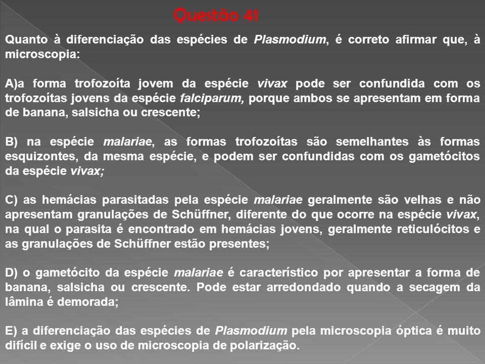 Questão 41 Quanto à diferenciação das espécies de Plasmodium, é correto afirmar que, à microscopia: