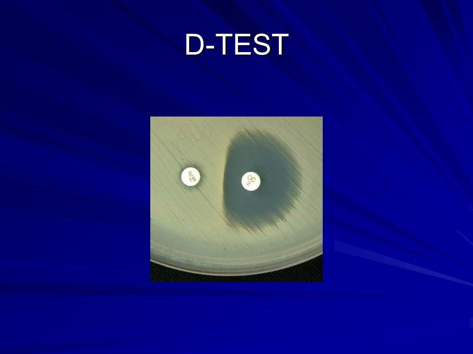 D-TEST
