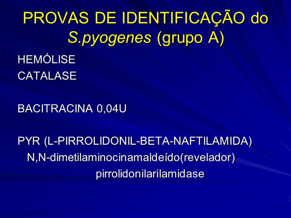 PROVAS DE IDENTIFICAÇÃO do S.pyogenes (grupo A)