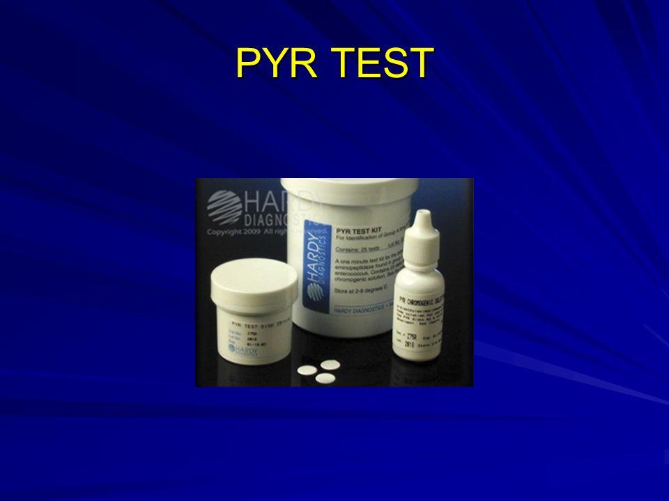 PYR TEST