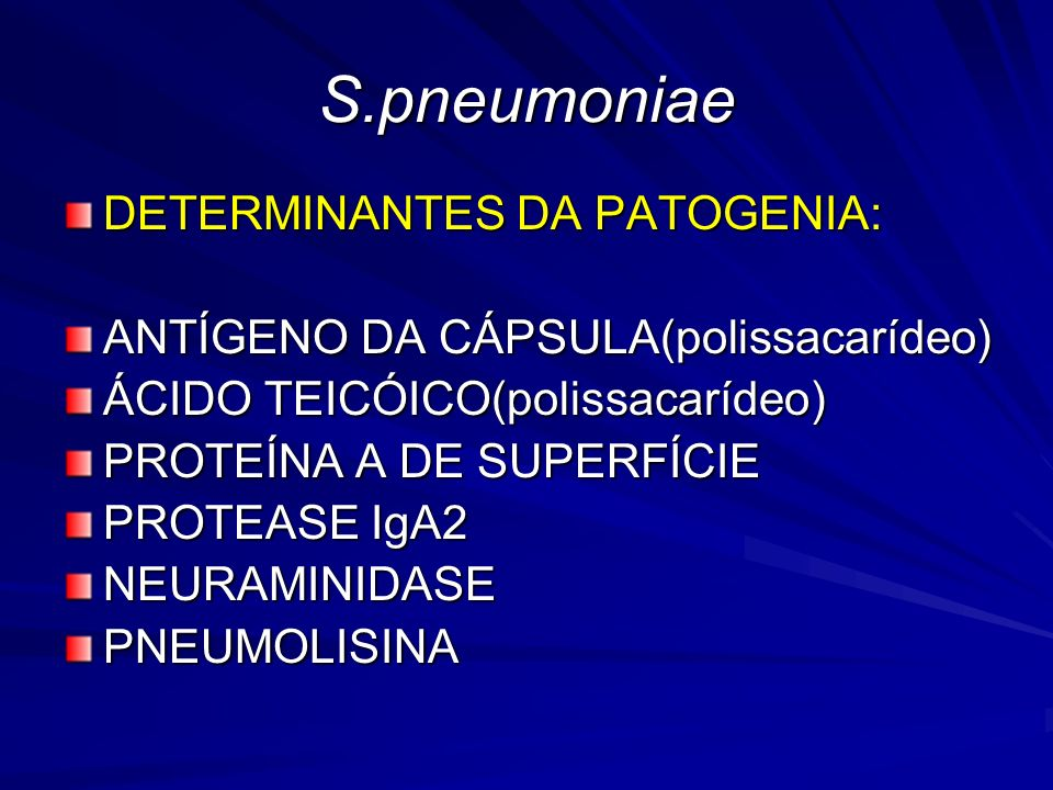 S.pneumoniae DETERMINANTES DA PATOGENIA: