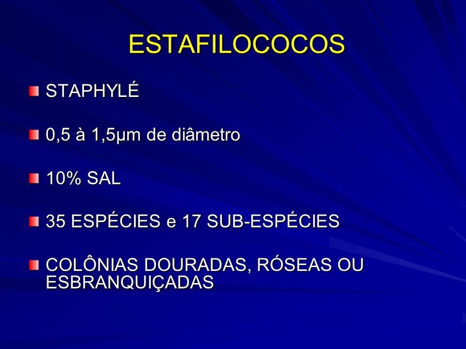 ESTAFILOCOCOS STAPHYLÉ 0,5 à 1,5µm de diâmetro 10% SAL
