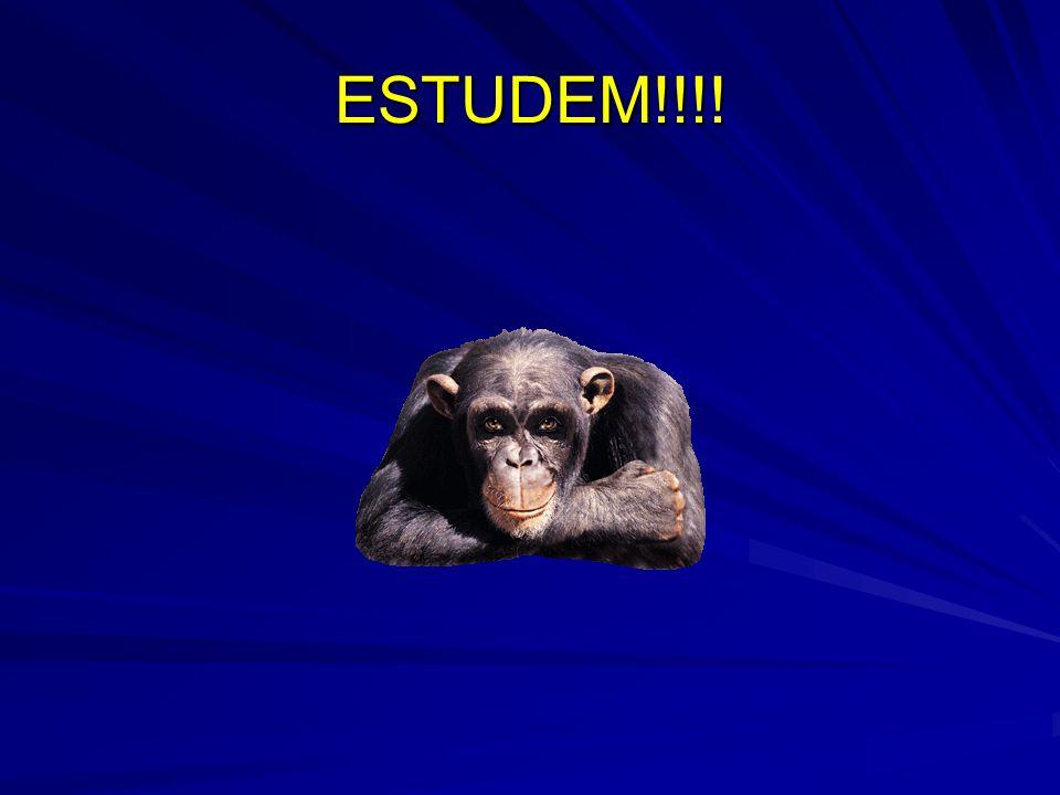 ESTUDEM!!!!