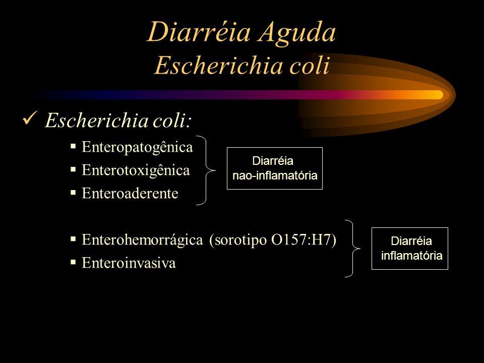 Diarréia Aguda Escherichia coli